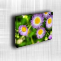 Doku Canvas Baskı Çiçek- CIGE559