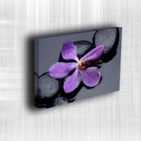 Doku Canvas Baskı Çiçek- CIGE598