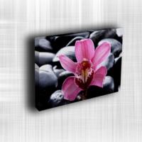 Doku Canvas Baskı Çiçek- CIGE631