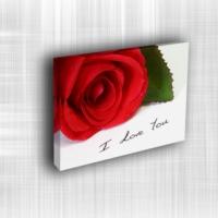 Doku Canvas Baskı Çiçek- CIGE011