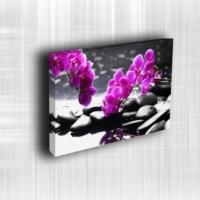 Doku Canvas Baskı Çiçek- CIGE577