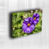 Doku Canvas Baskı Çiçek- CIGE558