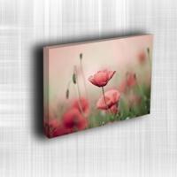 Doku Canvas Baskı Çiçek- CIGE546