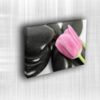 Doku Canvas Baskı Çiçek- CIGE005