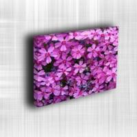 Doku Canvas Baskı Çiçek- CIGE549