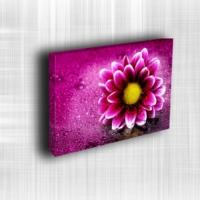 Doku Canvas Baskı Çiçek- CIGE543