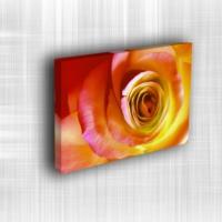 Doku Canvas Baskı Çiçek- CIGE044