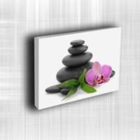 Doku Canvas Baskı Çiçek- CIGE571