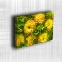 Doku Canvas Baskı Çiçek- CIGE555