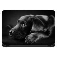 15.6 INC Notebook Sticker Sevimli Küçük Labrador