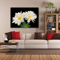 Tablom İki Beyaz Çiçek Kanvas Tablo