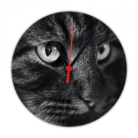 Fotografyabaskı Kedi Gözleri 20 Cm Yuvarlak Hdf Duvar Masa Saati