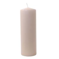 Euro Flora Mum 30X10 Cm (Cream-04)