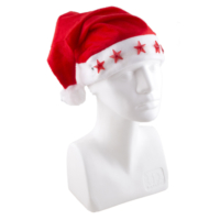 Euro Flora Şapka Yılbaşı 27X39 Cm