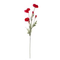 Euro Flora Gelincik 70 Cm