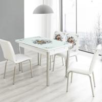 Evinizin Mobilyası Açılır Cam Mutfak Masası Masa Sandalye Buket Desenli(4 Sandalyeli)