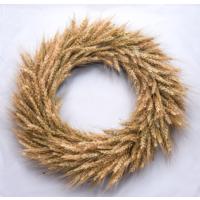 Dekonatur Buğday Başak Kapı Süsü