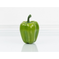 Madame Coco Dekoratif Dolmalık Biber Yeşil Küçük