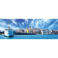 Rengo - İstanbul Kanvas Tablo (0015)