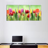 3 Parça Çiçek Bahçesi Kanvas Tablo 30x63 cm