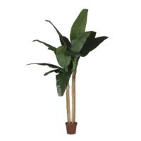 Yargıcı Yapay Muz Ağacı - Ficus Lyrata 210 Cm