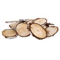 Loveq Sedir Ağacı Dilimi 10 Cm 500 Gr Pk (Beyaz) Drn-33865