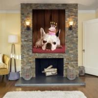 BuldumBuldum Doğum Günü Köpeği Kanvas Tablo