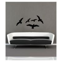 Kuşlar-1 Kadife Duvar Sticker 5 Adet Kuş