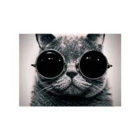 Gözlüklü Kedi Notebook Sticker