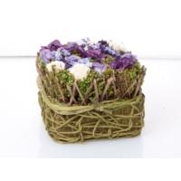 Biev Krem Mor Hasır Saksıda Çiçek 19X19X14Cm