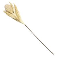Yargıcı Yapay Çiçek ( 82 cm )
