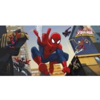 Parti Şöleni Spiderman Duvar Afişi
