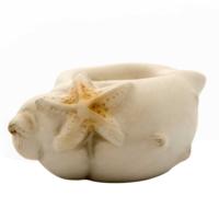 Vitale Danny Deniz Kabuğu Dekoratif