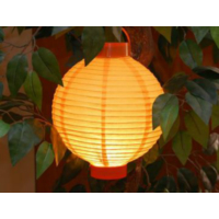 Wildlebend Ledli Japon Feneri