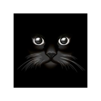 Kara Kedi Bulaşık Makinesi Sticker