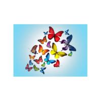 Uçuşan Kelebekler Notebook Sticker