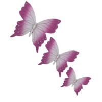 Üçlü Kelebek Duvar Süsü Lila Beyaz