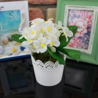 Dantelli Saksıda Beyaz Menekşe Yapay Çiçek