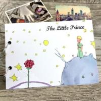 Maxipark Küçük Prens Tasarım Kendin Yap Fotoğraf Albümü Ve Defter