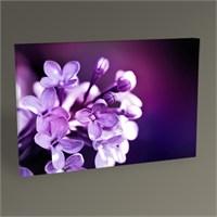 Tablo 360 Purple Flower Tablo 105X70