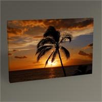 Tablo 360 Palm And Sunset Tablo 45X30