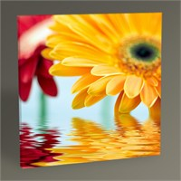 Tablo 360 Colorful Flowers Tablo 30X30
