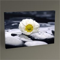 Tablo 360 Flower And Stones Tablo 45X30