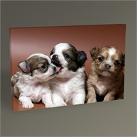 Tablo 360 Köpek Yavruları Tablo 45X30