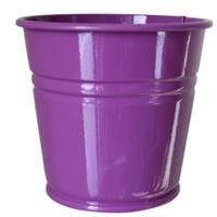 Pandoli Mor Renk Galvaniz Kurabiye Kasesi 11 Cm Küçük Boy 1 Adet