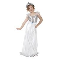 Parti Paketi Gümüş Prenses Kostümü 7-9 Y