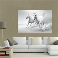 Atlantis Tablo Beyaz Atlar 75X50 Cm