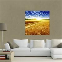 Atlantis Tablo Buğday Tarlası 50X50 Cm