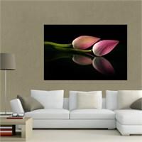 Atlantis Tablo Lotus Çiçeği 75X50 Cm