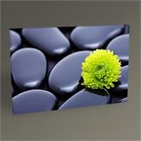 Tablo 360 Green Flower Tablo 45X30